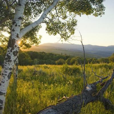 Summer Range Ranch, a 825 acre Colorado ranch